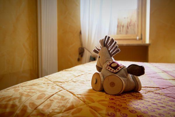 cucciolo-casa-vacanza-valle-d-aosta-italy-008D41D118A-E1C1-6F5F-1742-ED460C743890.jpg